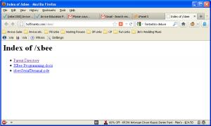 فایل آپلود شده روی وب سایت